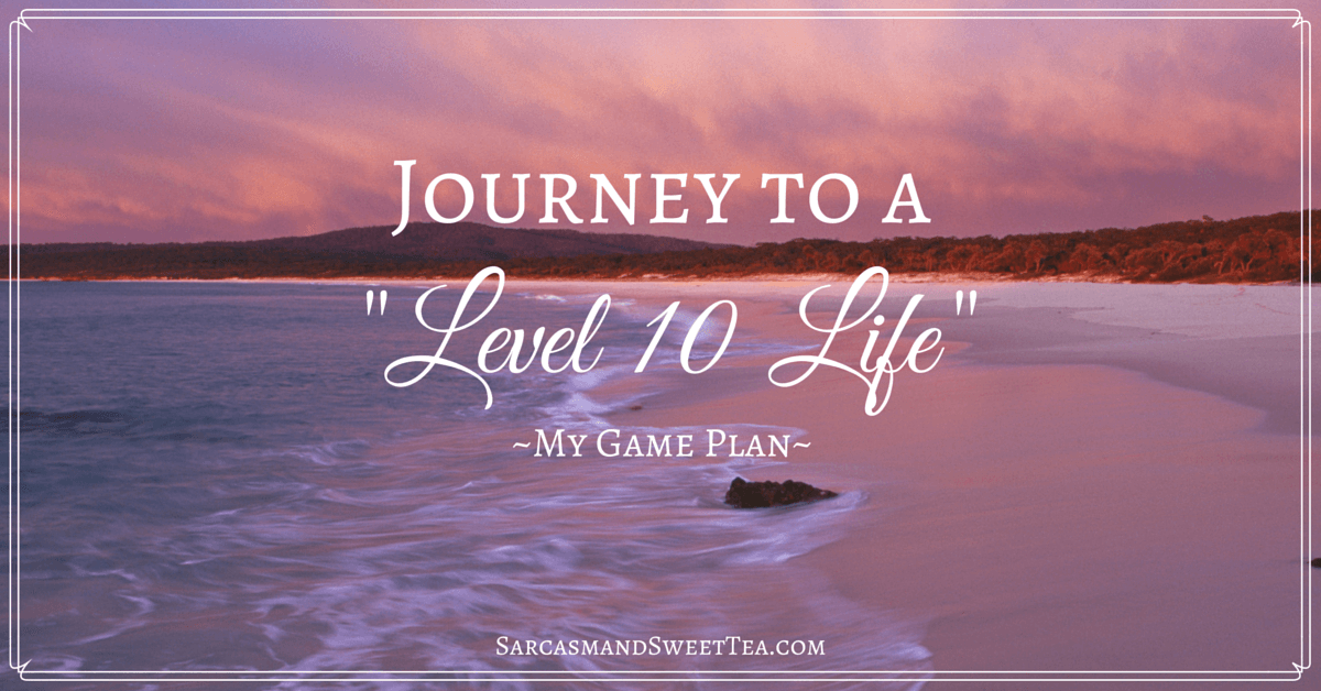 Journey To A Level 10 Life My Game Plan Sarcasm And Sweet Tea